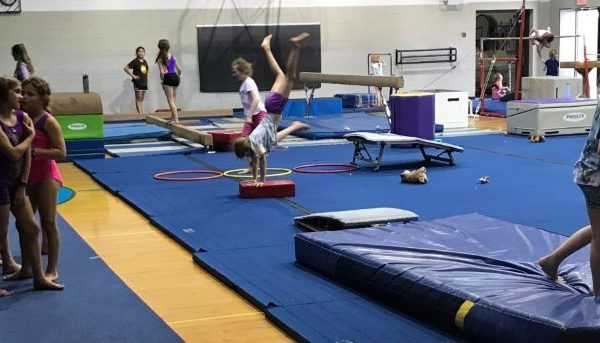 Gymnastics Camp Photo (7)